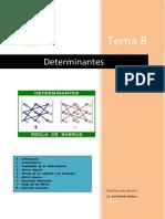 Tema 8 Determinantes
