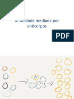Imunidade mediada por anticorpos e vacinas 2019.pptx