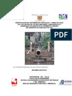 informeejecutivoriosmelendezcanaveralejo.PDF