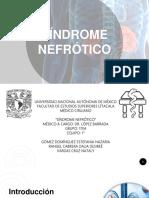 Sindrome Nefrotico f