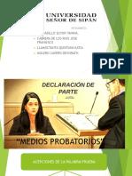 Medios Probatorios Diapos[1]