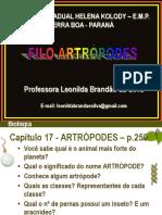 Os Artropodes
