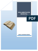 29. Reglamentacion Municipal .pdf