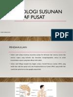Fisiologi Susunan Saraf Pusat by Hari
