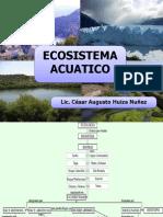 bioma acuatico
