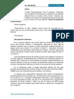 14. Generos Haemophilus y Bordetella
