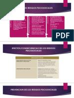 resumenPRINCIPALES RIESGOS PSICOSOCIALES
