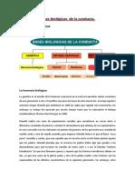 Psicología bachillerato tema 2
