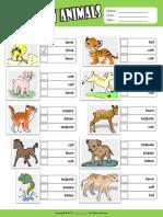 Baby Animals Esl Vocabulary Multiple Choice Worksheet for Kids