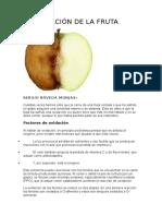 LA OXIDACIÓN DE LA FRUTA.docx