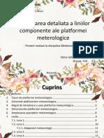 4. Prezentarea Detaliata a Liniilor Componente Ale Platformei Meteorologice