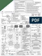 Ley 39-2015 (FASES).pdf