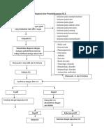 Alur Berpikir Untuk Mendiagnosis Dan Penatalaksanaan SLE