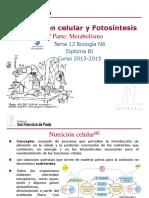 GTP_T13. Respiración Celular y Fotosíntesis (1ªParte_Metabolismo) 2013-15