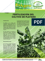 fertilización del cultivo de plátano