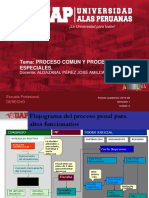 Semana 4 Derecho Procesal Penal 3 (1)