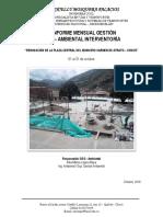 Informe SISO Ambiental #6 Final