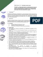 Directiva de Finalizacion Del Año Escolar 2019 Ccesa007