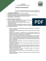 TDR Sub Gerencia