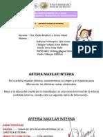 Tema 6.2. Arteria Maxilar Interna