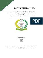 Format Laporan Individu Dan Kelompok PKK I