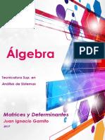 Apunte Matrices y Determinantes