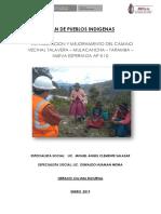Plan de Pueblos Indigenas Miguel
