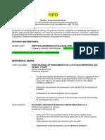modelo-de-cv.docx