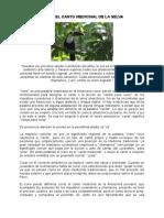 283814011-ICARO-doc.doc