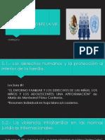 CAPITULO V - LEGISLACION SOBRE LA VIF.pptx