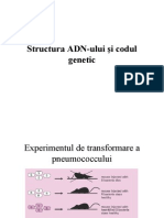Structura ADN-Ului Si Codul Genetic