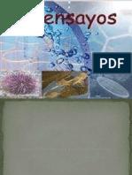 Bioensayosynormativa 121203164150 Phpapp01 Convertido