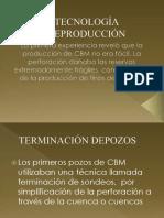 TECNOLOGÍA DEPRODUCCIÓN.pptx