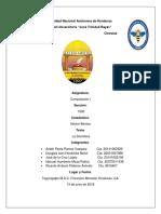 DOMOTICA - G1 - 2018.docx