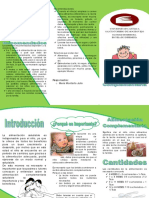 Alimentacioncomplementaria 121101211620 Phpapp02 (1)