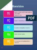 receptores muscarinicos