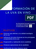 Curso español uva_en_vino