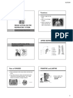 Drugs Acting on the Respiratory System Handout