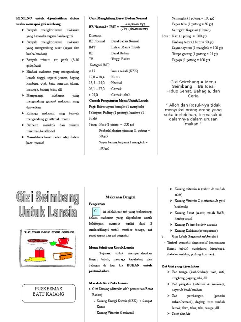 47087829 Leaflet Gizi Seimbang Bagi Lansia Doc