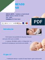 ALEITAMENTO (1).pptx