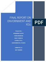 evnvironment and you report.docx