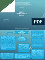 Cultura Organizacional Tarea N°2.pptx