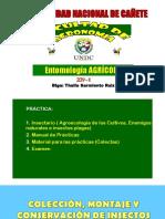 COLECCIÓN Y CONSERVACIÓN DE INSECTOS.pdf