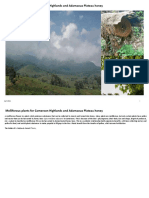 Annex 1 Melliferous plants Kilum Ijum April 2011.pdf