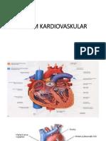 Sistem Sirkulasi & Jantung