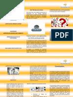 folleto presupuestal