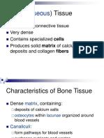 Bone-Tissue.ppt