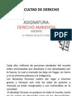 CLASE-IX-Derecho-Ambiental-2018.pptx