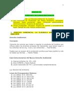 Dcho Publico, Prov y Mpal - Uda 9