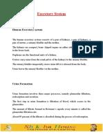 9-Excretory-System.pdf